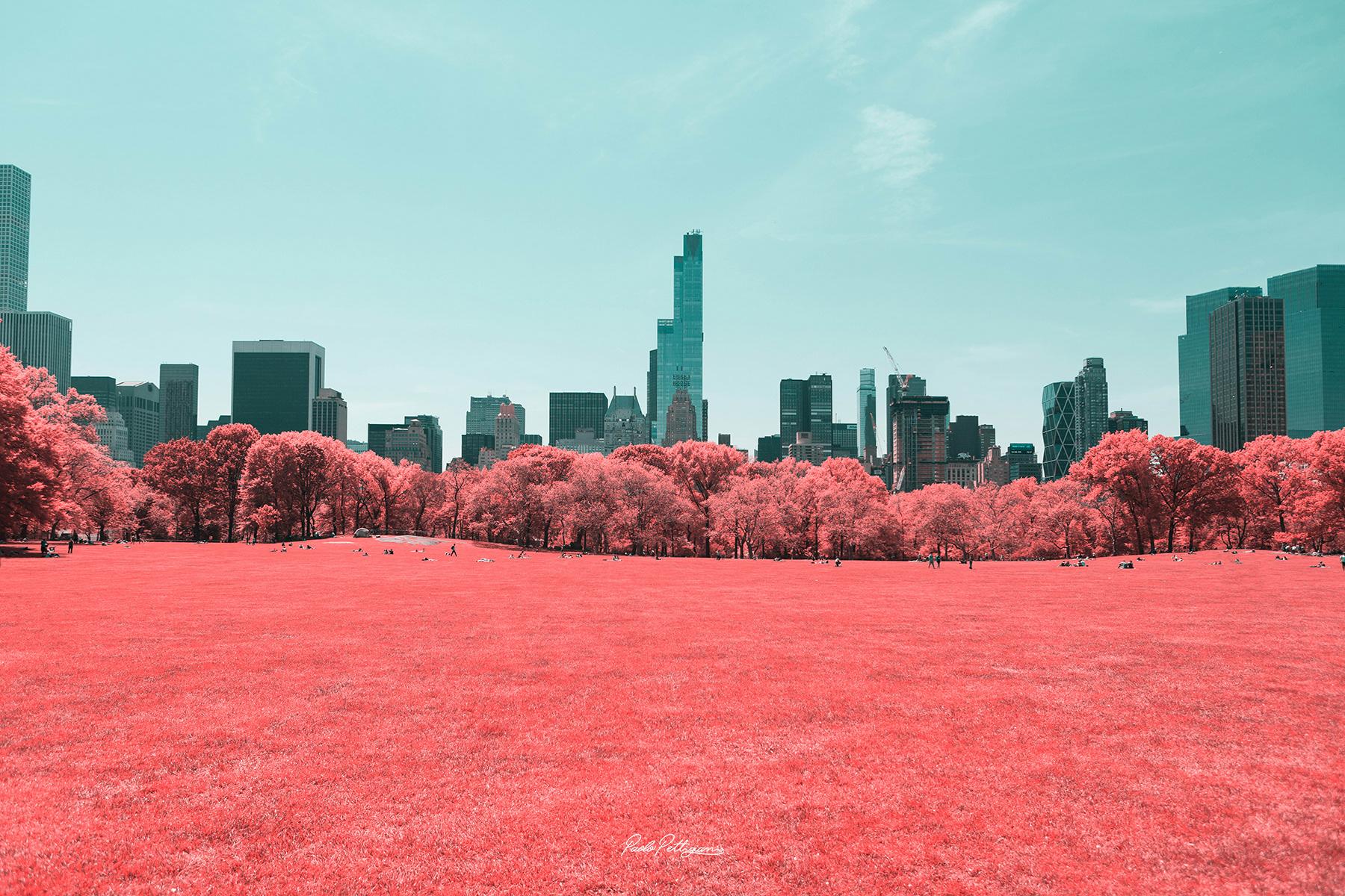 foto di central park virata rosso